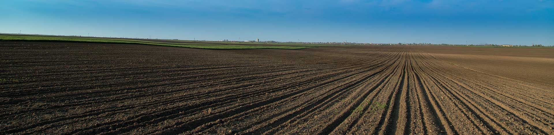 Tilled farm field